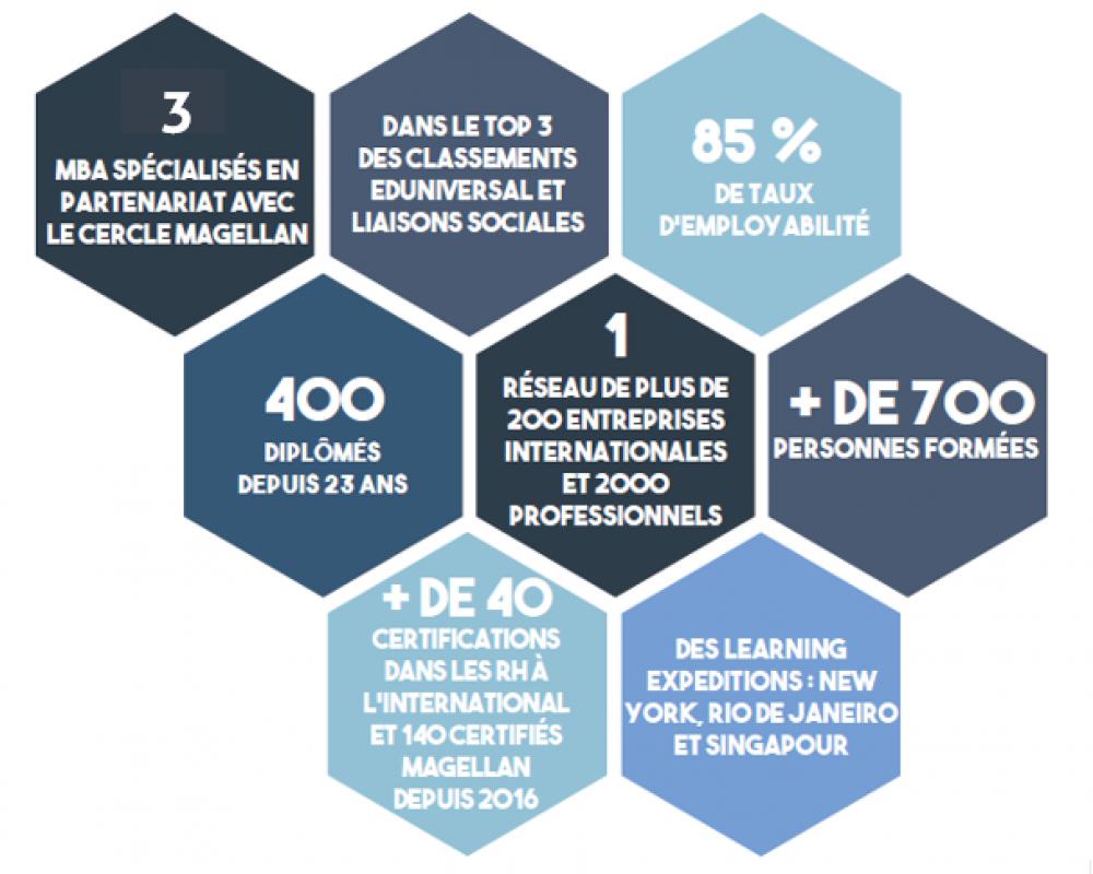 Infographie Institut Magellan 3 MBA 2018